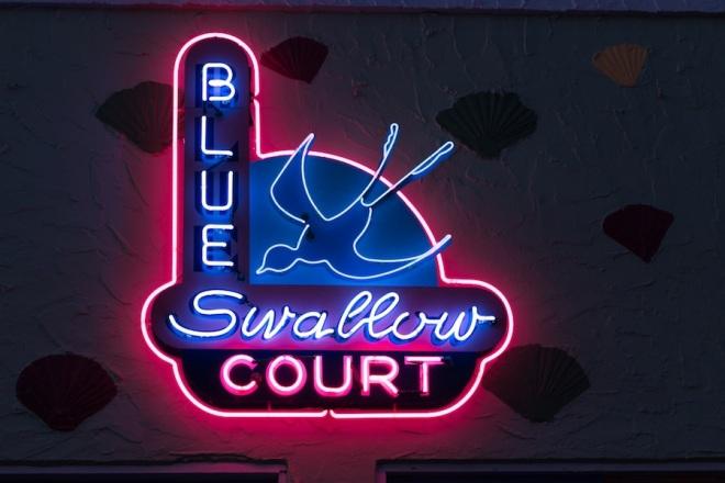 07 blue-swallo-new-neon